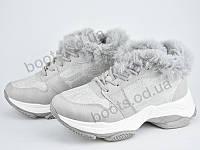 """Ботинки зимние женские """"Violeta"""" #92-9 grey. р-р 36-41. Цвет серый. Оптом"""