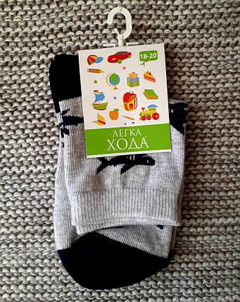 Носочки детские серые Акулы ТМ Легка хода  (Украина)  размер 18 20 22 24, фото 2