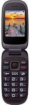 Мобильный телефон Maxcom MM818 Black Гарантия 12 месяцев, фото 2