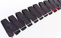 Лента для художественной гимнастики с палочкой 6м Lingo C-1762 (нейлон, l-6м, палочка-металл, l-56см, цвета в ассортименте)