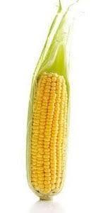 Купить Семена кукурузы ЛГ 2195