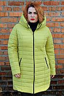 Зимняя куртка К 0019 с 05