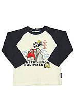 Детская футболка для мальчика BRUMS Италия 123BDFL007