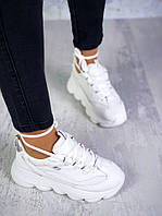 Кросівки Sk&chers, фото 1