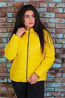 Куртка жіноча на синтепоні батал 50871, фото 1