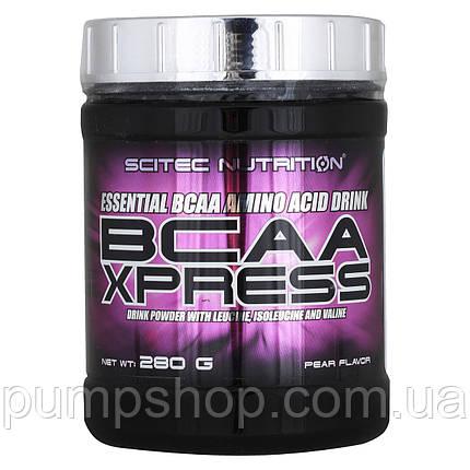 Бцаа Scitec Nutrition BCAA Xpress 280 г 40 порц., фото 2