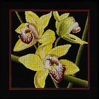 "Набор д/вышивания РТО ""Орхидеи ""Цимбидиум"" """