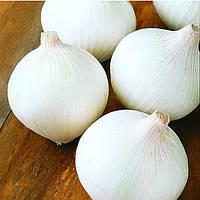 Семена лука белого Вайт Опера (White Opera F1) 250 000 сем. Cora Seeds