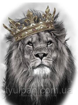 Вафельные картинка на торт лев