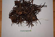 Таволга вязолистная ( лабазник ) корень 100 грамм