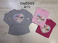 Реглан для девочек оптом, Seagull, 4-12 лет,  № CSQ-52425, фото 1