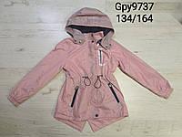 Ветровка на флисе для девочек оптом, Glo-story, 134-164 см,  № GPY-9737, фото 1