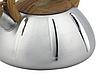 Чайник со свистком из нержавеющей стали Benson BN-704 (3 л), нейлоновая ручка, индукция   свистящий чайник, фото 4