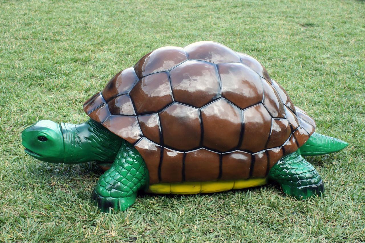 Черепаха (Б)