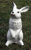 Заяц стоящий