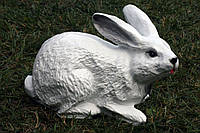 Заяц лежащий, фото 1