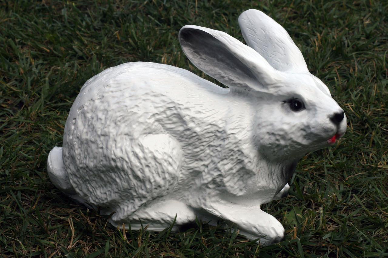 Заяц лежащий