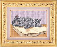 Схема для вышивки бисером - Игривый котенок, Арт. ЖБ3-007-1-R - Распродажа