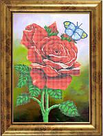 Схема для вышивки бисером - Прекрасные розы, Арт. НБ3-026-R - Распродажа