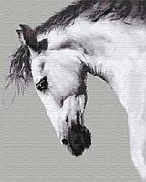 "Картина по номерам. Brushme ""Белая лошадь"" GX25707"
