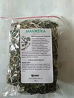 Манжетка лекарственная трава