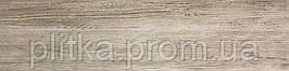 EVORA 15х60 (підлога) BC