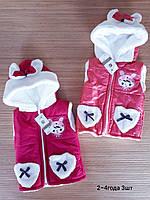 Демисезонная жилетка для детей 2-4 лет. Маломерят .Турция.Оптом