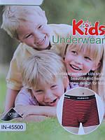 Детские трусики Indena стрейч (в упаковке 24 шт.)