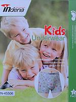 Indena труси дитячі (24 шт. в упаковці)