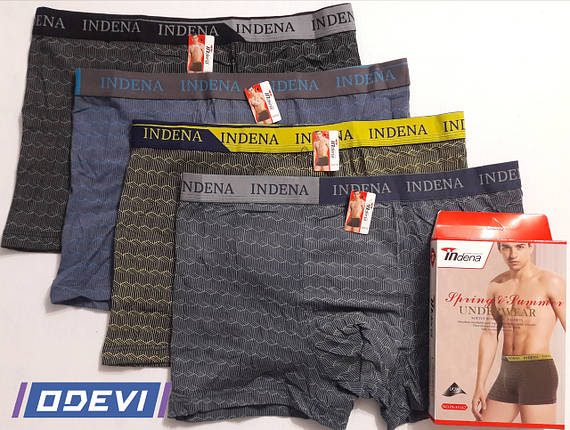 Чоловічі труси Indena бавовна на спортивній резинці ART 85142, фото 2