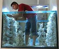 Аквариумы – клей герметик Dow Corning для аквариумов