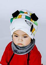 Детский комплект шапка+шарф для мальчика Dembo House Украина Текс