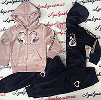 Велюровый,модный спортивный костюм для девочек, 116-146 см
