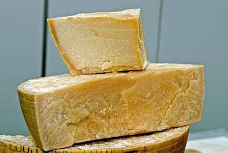 Закваска для сыра Пармезан 10 л
