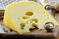 Закваска для сыра Радомер 10 л