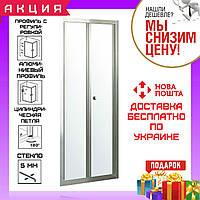 Дверь в нишу 90 см складывающиеся Eger Bifold 599-163-90(h) профиль хром стекло прозрачное