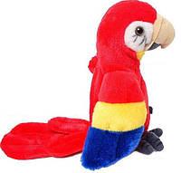 Говорящий попугай повторуха