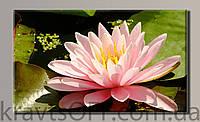 "Картина на холсте ""Цветы 4 '' ( 54х89 см )"