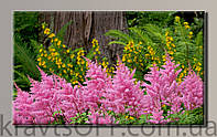 "Картина на холсте ""Цветы 10 '' ( 54х89 см )"