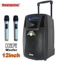 Аккумуляторная акустика SL12-01 с микрофонами Bluetooth, фото 1