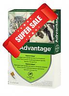 Препарат от блох для кошек и кроликов весом до 4 кг Bayer Advantage 40 4 х 0,4 мл