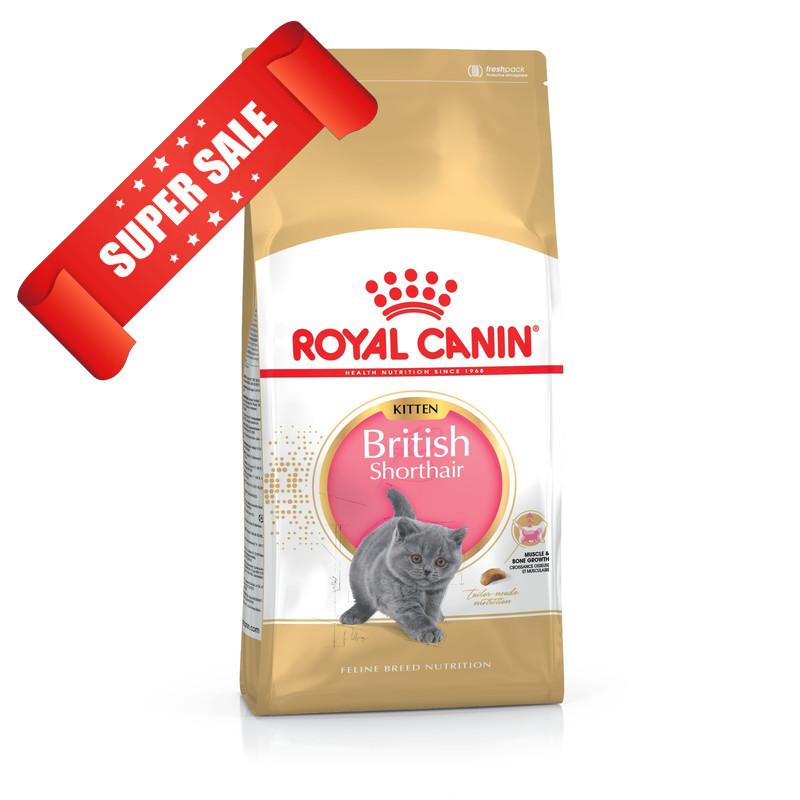 Сухой корм для котов Royal Canin British Shorthair Kitten 2 кг + 3 пауча