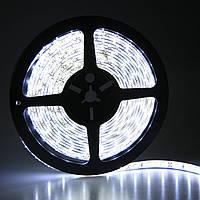 Лента Светодиодная №5630 - Свет холодный белый - 60 светодиодов в метре IP20