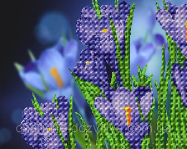 Схема для вышивки бисером Синие крокусы