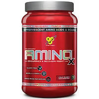 BSN Аминокислоты BSN Amino X, 1.01 кг (fruit punch)