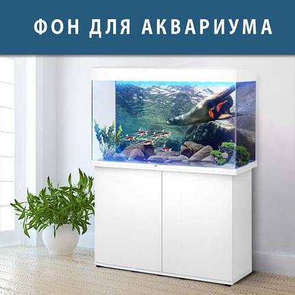 Морское дно наклейка в аквариум 40х65 см., фото 2