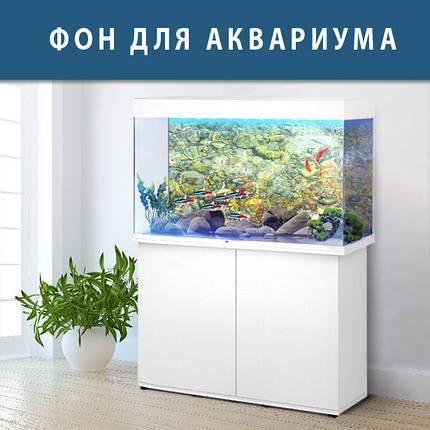 Морская фауна на наклейке в аквариум, в наличии и под заказ 40х65 см., фото 2