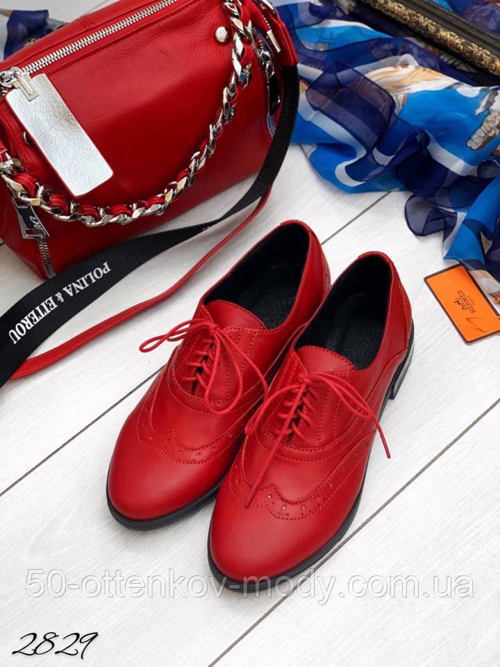 Женские туфли на шнурках из натуральной кожи с перфорацией черные, красные, капучино, синие