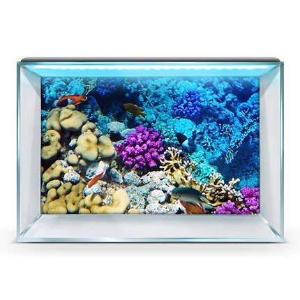 Наклейка в аквариум 3D морское дно, в разных размерах 40х65 см., фото 2