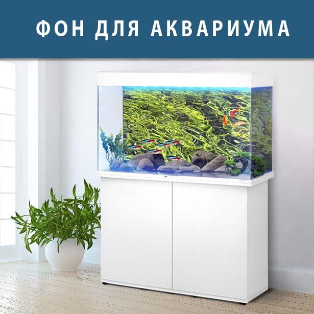 Подводный мир в аквариум наклейка, в разных размерах 40х65 см.